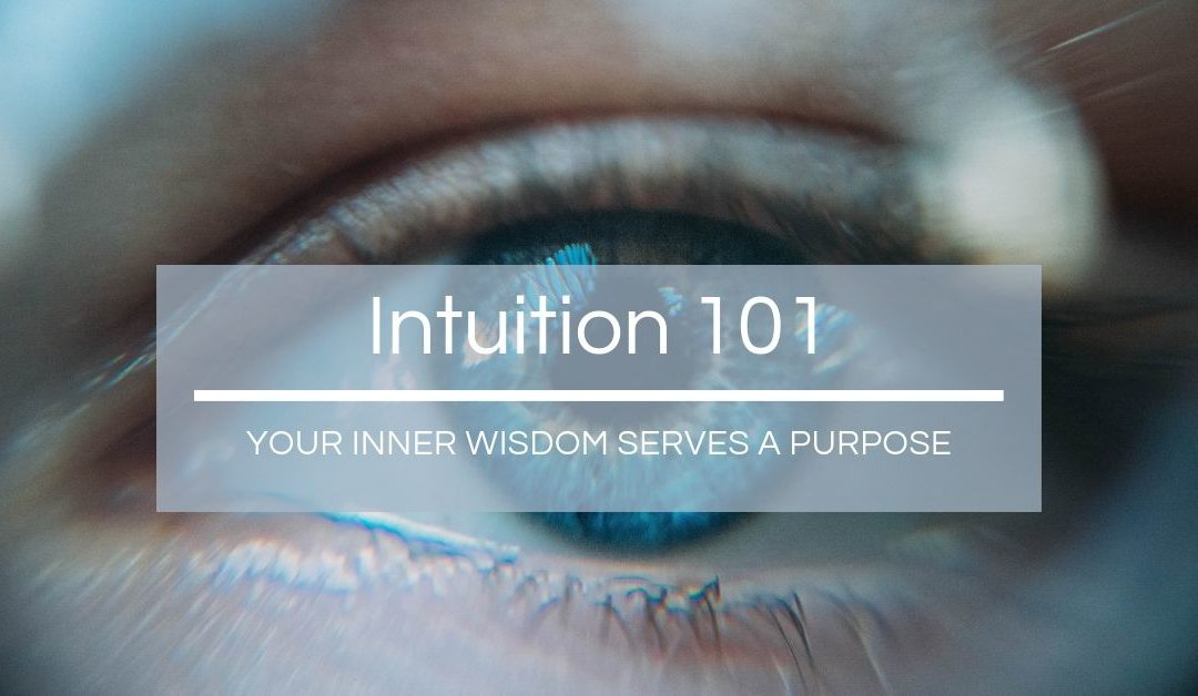 Intuition 101 - Serves a Purpose